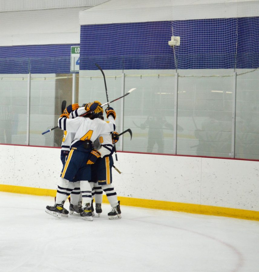 Players celebrate together after scoring the second of three goals made by North against West Fargo in their EDC game.