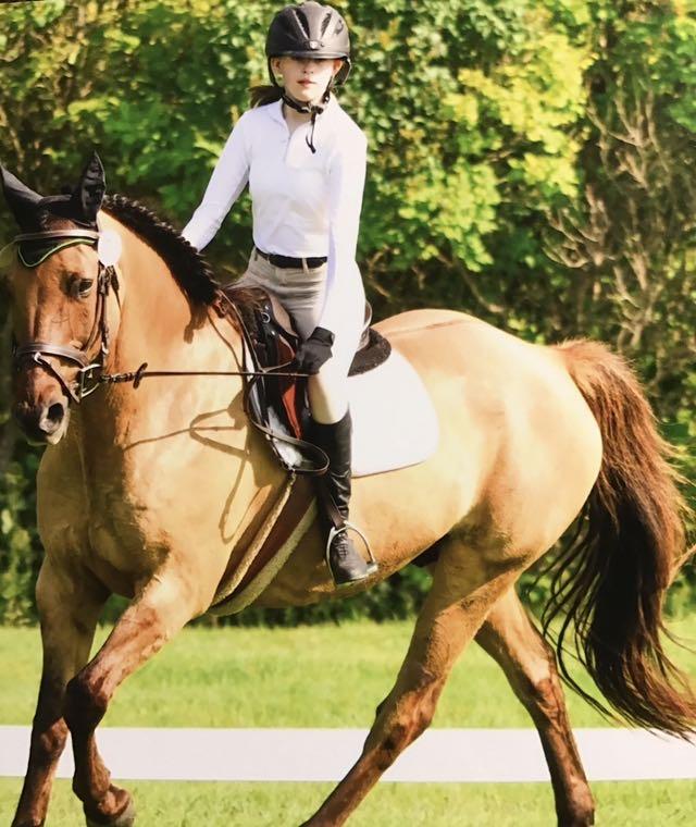 Under+the+saddle+of+horseback+riding